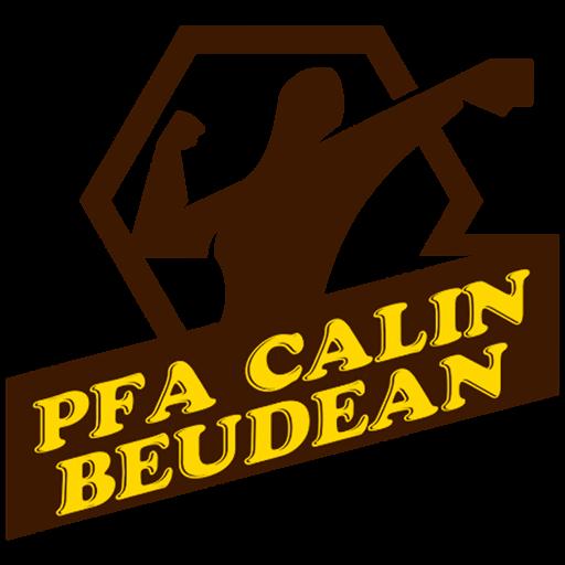 Calin Beudean PFA