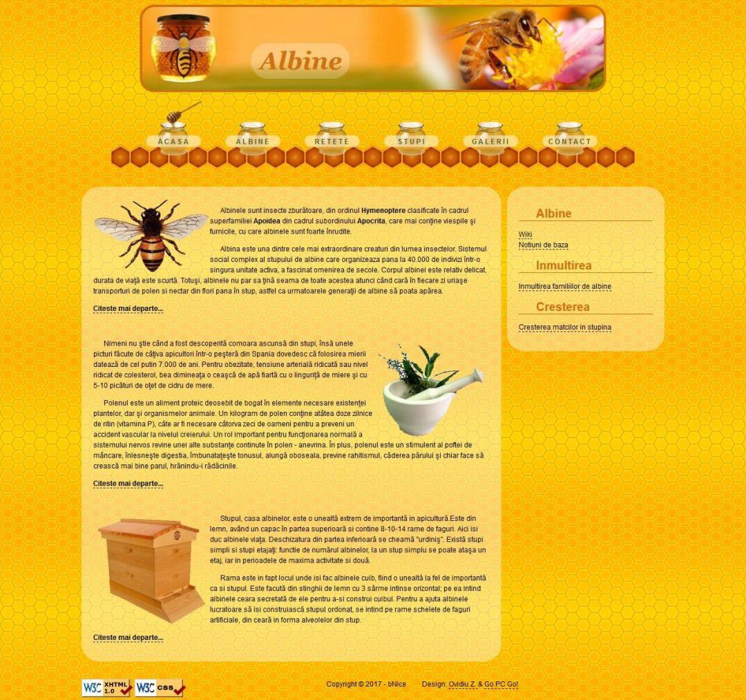bNice Honey-Bee